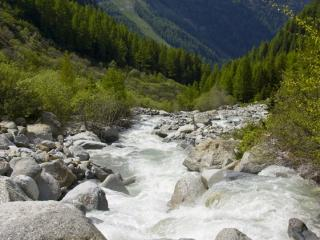 Rivière du Trient